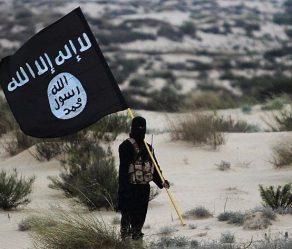 چیستی گروه تکفیری داعش، سازمان رزم و ساختار اقتصادی آن